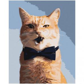 Рыжий кот в бабочке Раскраска картина по номерам на холсте