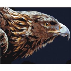 Голова летящего орла 80х100 Раскраска картина по номерам на холсте