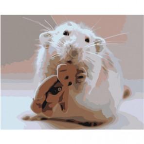 Белый мышонок и мишка Раскраска картина по номерам на холсте