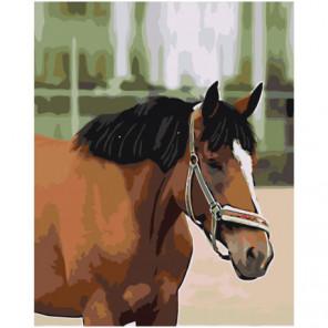 Гнедой конь 80х100 Раскраска картина по номерам на холсте