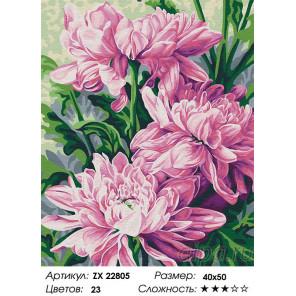 Сложность и количество цветов Три астры Раскраска картина по номерам на холсте ZX 22805