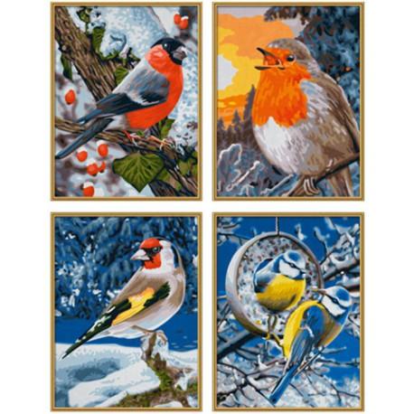 Птицы зимой Раскраски по номерам Schipper (Германия ...