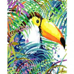 Попугай тукан Раскраска картина по номерам на холсте