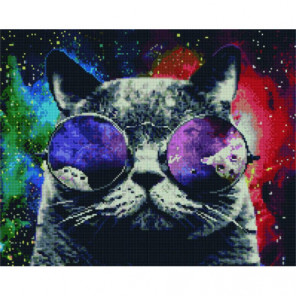 Космический кот Алмазная мозаика вышивка Painting Diamond