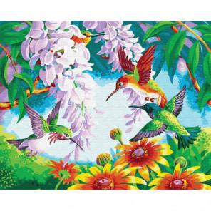 Колибри среди цветов Раскраска картина по номерам на холсте