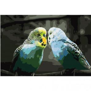 Волнистые попугайчики 80х120 Раскраска картина по номерам на холсте