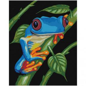 Синяя лягушка Раскраска картина по номерам на холсте