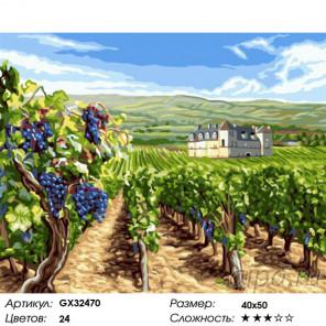 Виноградные поля Раскраска картина по номерам на холсте GX32470