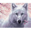 Белый волк Раскраска картина по номерам на холсте