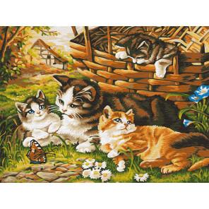 Котята на прогулке Раскраска картина по номерам на холсте Z-EX5791