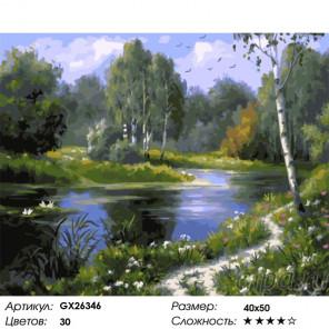 Тропинка вдоль водоема Раскраска картина по номерам на холсте GX26346