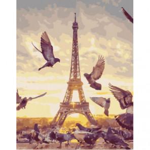 Парижские голуби Раскраска картина по номерам на холсте
