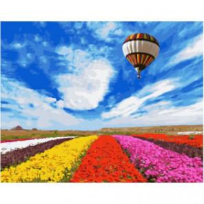 Воздушный шар над тюльпановым полем Раскраска картина по номерам на холсте