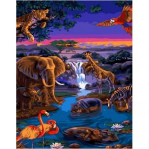 Животный мир Раскраска картина по номерам на холсте