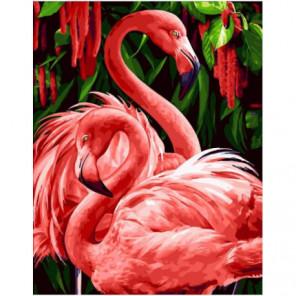 Важные фламинго Раскраска картина по номерам на холсте