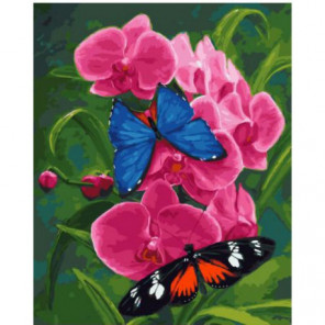 Бабочки и орхидея Раскраска картина по номерам на холсте