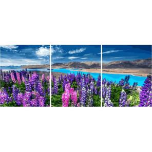 Цветы лета Триптих Раскраска картина по номерам на холсте