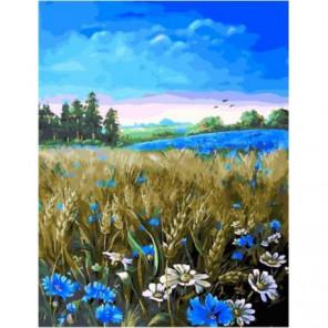 Васильковое лето Раскраска картина по номерам на холсте