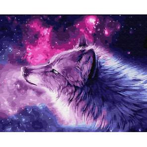 Волк и звезды Раскраска картина по номерам на холсте ZX 23677