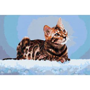GX30561 Леди Кошка Раскраска картина по номерам на холсте ...
