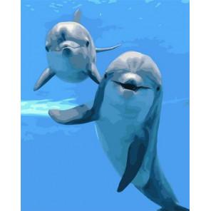 Дружелюбные дельфины Раскраска картина по номерам на холсте PK72041