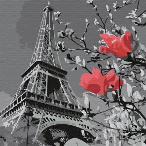 Париж в цвету Раскраска картина по номерам на холсте KHM0038