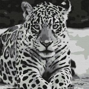 Ягуар Раскраска картина по номерам на холсте KHM0039