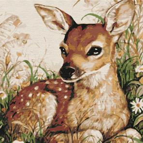 Пятнистый оленёнок Раскраска картина по номерам на холсте KHM0055