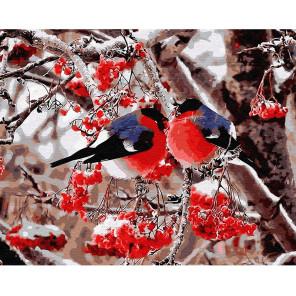 Снегири Раскраска картина по номерам на холсте KH0606