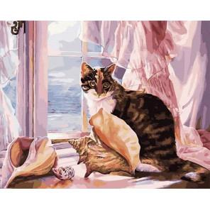 Кошка на окне Раскраска картина по номерам на холсте MCA956