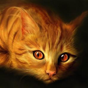 Рыжий котик Алмазная мозаика вышивка без подрамника Molly KM0217