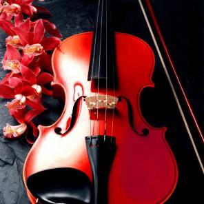 Музыка цветов Алмазная мозаика вышивка без подрамника Molly KM0224