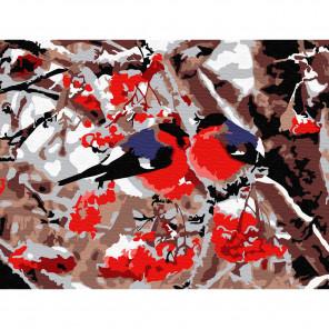 Внешний вид коробки Снегири Раскраска по номерам на холсте Molly KH0755
