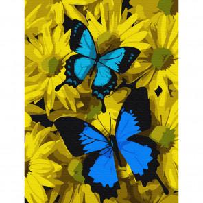 Синие бабочки в цветах Раскраска по номерам на холсте Molly KH0794