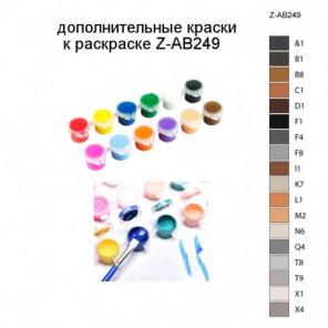Дополнительные краски для раскраски Z-AB249