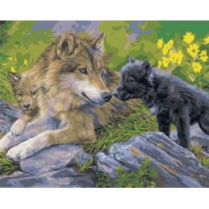 Красивая волчица с волчатами Раскраска картина по номерам на холсте GX29990