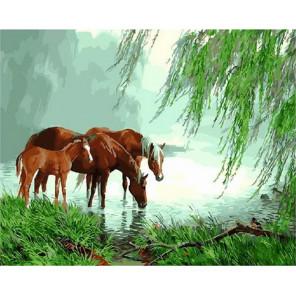 На водопое у реки Раскраска картина по номерам на холсте MCA530