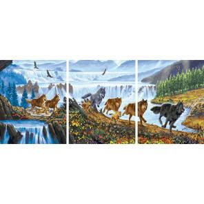 Волчья стая Триптих Раскраска картина по номерам на холсте РХ5290