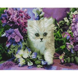 Котенок в ирисах Алмазная мозаика вышивка на подрамнике GF4221