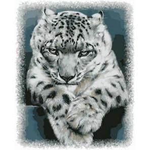 Снежный барс Раскраска картина по номерам на холсте GX37911