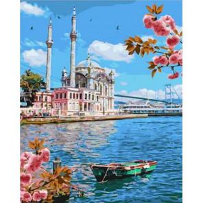Невероятная Турция Раскраска картина по номерам на холсте GX37783