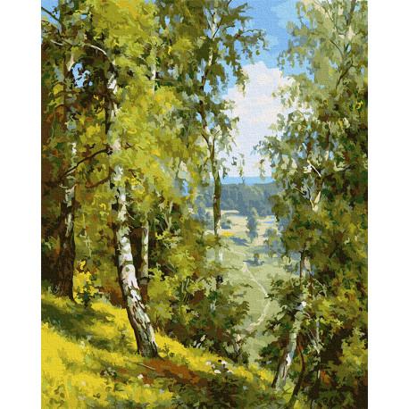 Берёзы в лесу. Прищепа Раскраска картина по номерам на холсте Molly KH0976