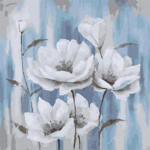Белые маки на голубом фоне Раскраска картина по номерам на холсте Molly KH0947