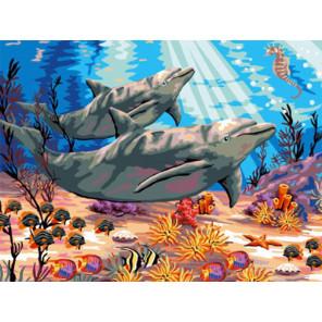 Красочный мир дельфинов Раскраска картина по номерам на холсте EX5621