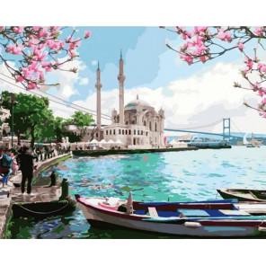 Прекрасный Стамбул Раскраска картина по номерам на холсте GX38070