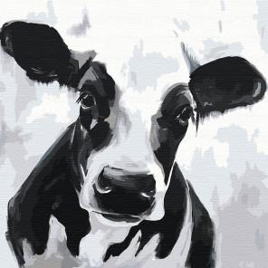 Черно-белая бурёнка Раскраска картина по номерам на холсте