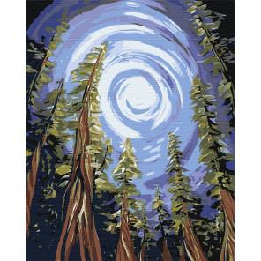Магический лес Раскраска по номерам на холсте Живопись по номерам RA117