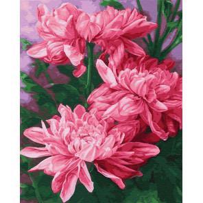 Три розовых пиона Раскраска картина по номерам на холсте GX23053
