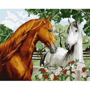 Пара лошадей Раскраска картина по номерам на холсте GX9040