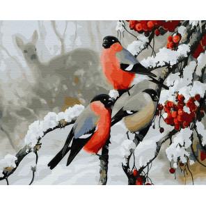 Снегири зимой Раскраска картина по номерам на холсте GX29465